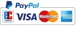 Einfaches Bezahlen mit Paypal